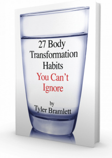 Ebook cover: 27 Body Transformation Habits