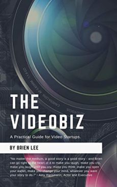 Ebook cover: The VideoBiz: A Practical Guide for Video Startups