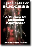 Ebook cover: Ingredients for Success: A mixture of Marketing Knowledge