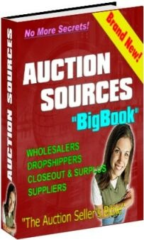Ebook cover: Auction Sources Big Book