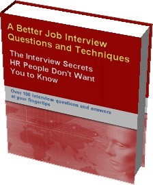 Ebook cover: A Better Job Interview - Questions and Techniques