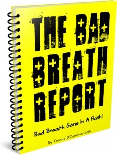 Ebook cover: The Bad Breath Report