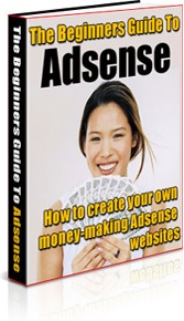 Ebook cover: The Beginners Guide To Adsense