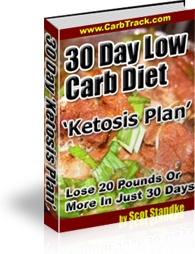 Ebook cover: 30 Day Low Carb Diet 'Ketosis Plan'