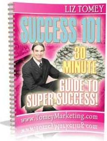 Ebook cover: Success 101