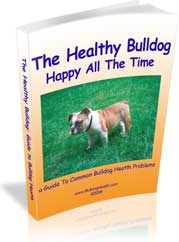 Ebook cover: The Healthy Bulldog: Happy All The Time