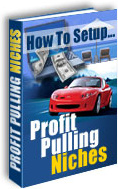 Ebook cover: How To Setup Profit Pulling Niches