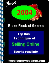 Ebook cover: The 2004 Black Book of Secrets