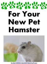 Ebook cover: Caring For Your New Pet Hamster