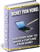 Ebook cover: Money From Home