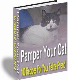 Ebook cover: Pamper Your Cat