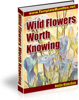 Ebook cover: Wild Flowers Worth Knowing