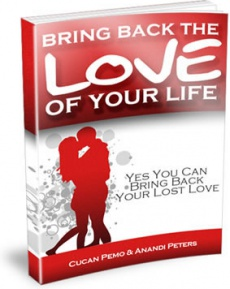 Ebook cover: Bring Back the Love of Your Life!
