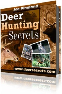 Ebook cover: Deer Hunting Secrets