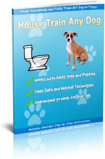 Ebook cover: Dog Trainer Pro