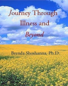 Ebook cover: Journey Through Illness