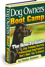 Ebook cover: Dog Owners Boot Camp