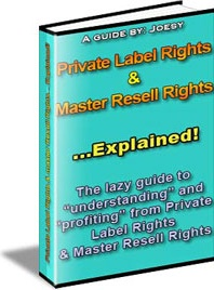 Ebook cover: Private Label Rights & Master Resell Rights... Explained!