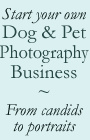 Ebook cover: Start a Dog & Pet Photography Business