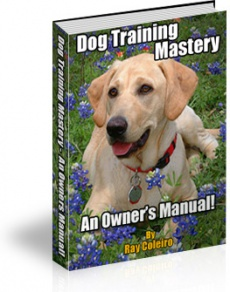 Ebook cover: Dog Training Mastery - An owners Manual!