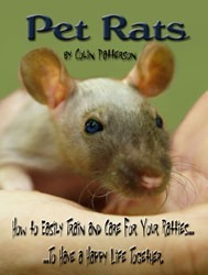 Ebook cover: Pet Rats: How to Easily Train and Care For Your Ratties...To Have a Happy Life Together.