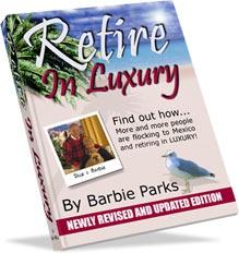 Ebook cover: Retire In Luxury