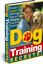 Ebook cover: Dog Training Secrets