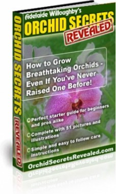 Ebook cover: Orchid Secrets Revealed