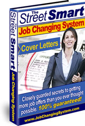 Ebook cover: Job Changing System
