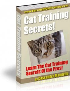 Ebook cover: Cat Training Secrets